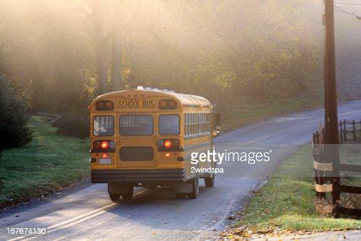 Misty Morning School Bus