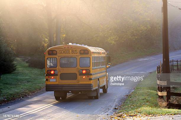Misty Morning School Bus