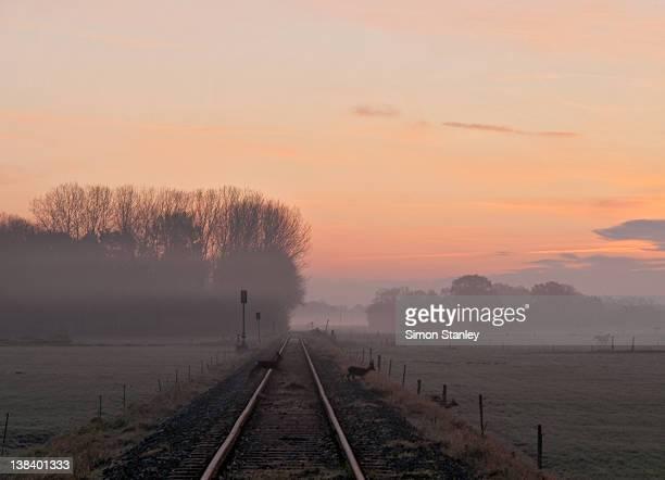 Misty morning sunrise by single railway track