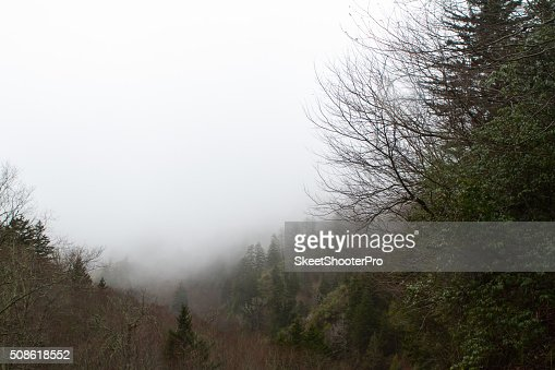 Misty Mountain : Stock Photo