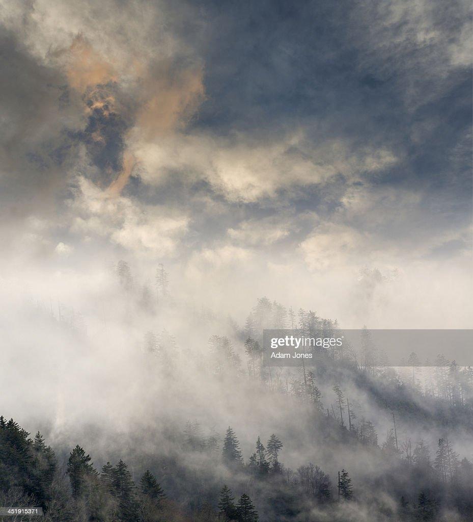 Misty mountain tops at sunset