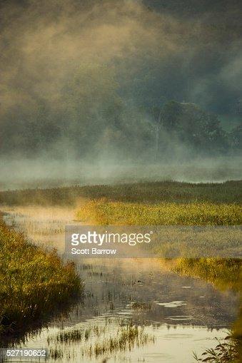 Misty river : Stock Photo