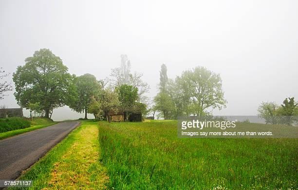 Misty road in Dordogne.