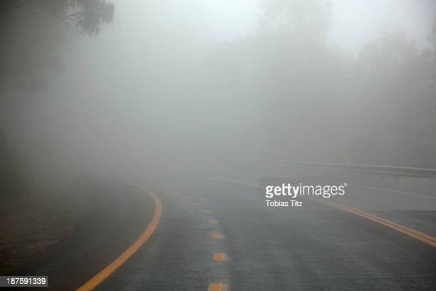 Misty road in Jindabyne, New South Wales, Australia