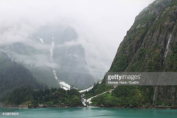 Misty scenery with coniferous trees and steep mountains
