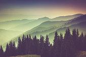 Misty summer mountain hills landscape. Filtered image:cross processed vintage effect.