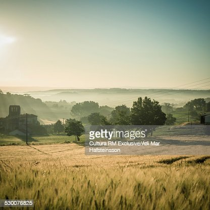 Misty wheatfields at sunrise, Prades, Midi Pyrenees, France