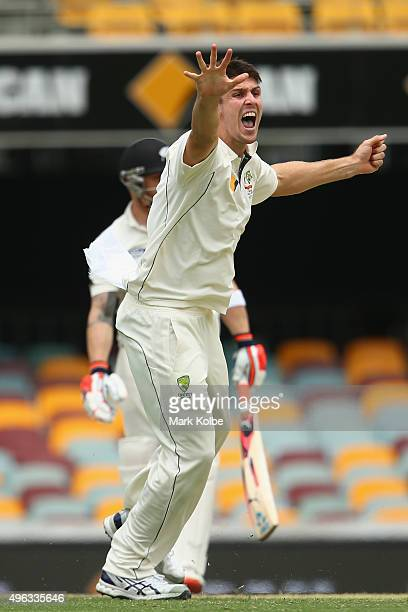 Mitch Marsh of Australia sucessfully appeals for the wicket of Brendon McCullum of New Zealand during day five of the First Test match between...
