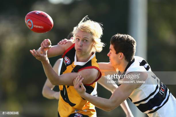 Mitchell Cotter of the Dandenong Stingrays handballs during the round 13 TAC Cup match between Dandenong and Northern Knights at Shepley Oval on July...