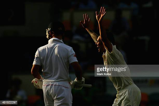 Mitchell Johnson of Australia celebrates taking the wicket of Jonathan Trott of England during day three of the First Ashes Test match between...