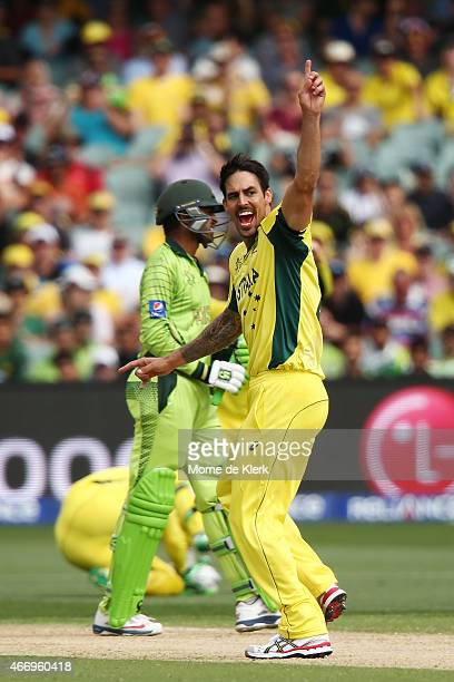 Mitchell Johnson of Australia celebtrates after getting the wicket of Haris Sohail of Pakistan during the 2015 ICC Cricket World Cup match between...