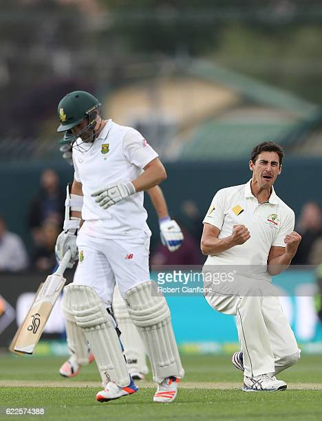 Mitchell Starc of Australia celebrates after taking the wicket of Dean Elgar of South Africa during day one of the Second Test match between...