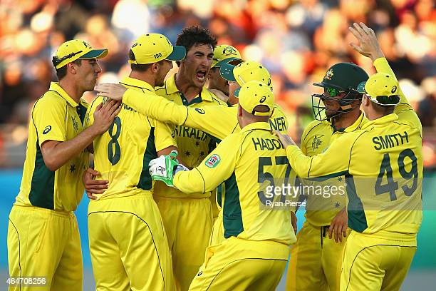 Mitchell Starc of Australia celebrates after taking the wicket of Tim Southee of New Zealand during the 2015 ICC Cricket World Cup match between...
