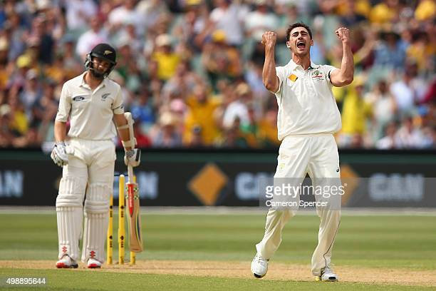 Mitchell Starc of Australia celebrates dismissing Kane Williamson of New Zealand for lbw during day one of the Third Test match between Australia and...