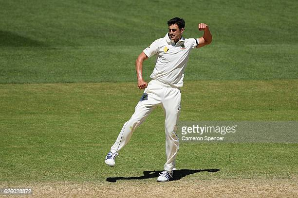 Mitchell Starc of Australia celebrates dismissing Vernon Philander of South Africa during day four of the Third Test match between Australia and...