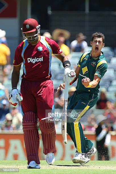 Mitchell Starc of Australia celebrates the wicket of Kieron Pollard of the West Indies during game one of the Commonwealth Bank One Day International...