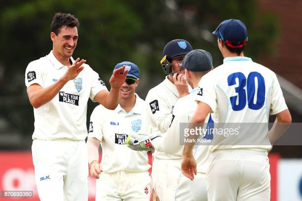 Mitchell Starc of the Blues celebrates with his team mates after trapping David Moody of the Warriors LBW to claim the second of his three wickets in...