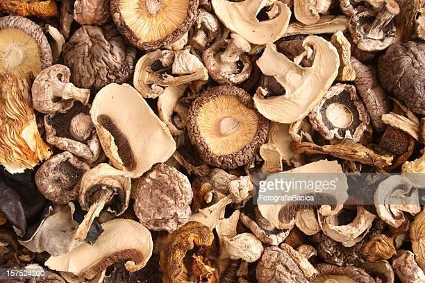Misto di funghi secchi