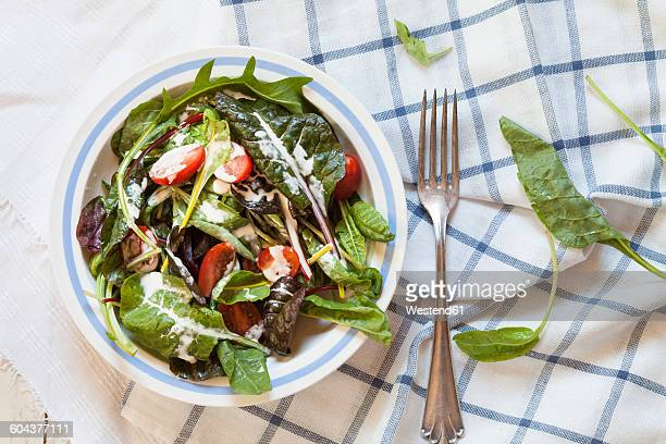 Mixed green salad with yoghurt sauce