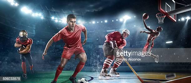 主要なスポーツの
