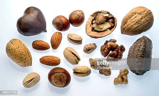 Mixed nuts on light box