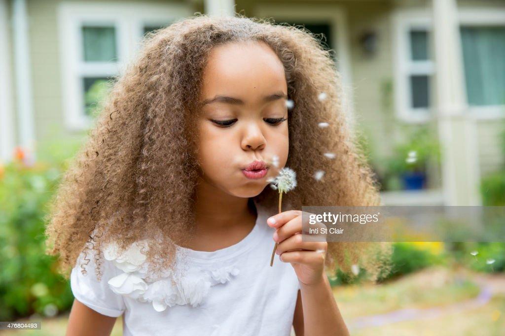Mixed race girl blowing dandelion seeds : Stock Photo