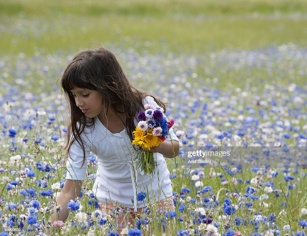 Mixed race girl picking wildflowers in field