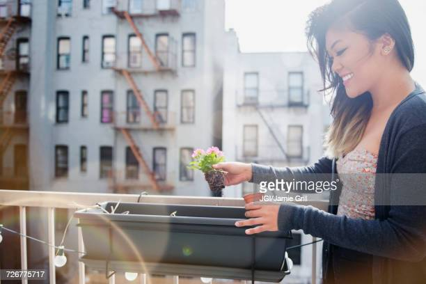 Mixed Race woman planting flowers in rooftop planter