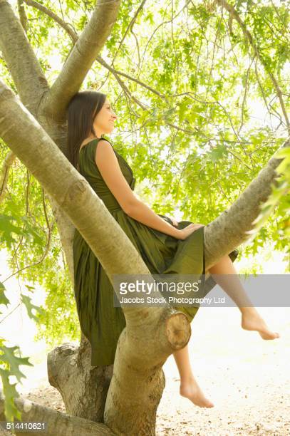 Mixed race woman sitting in tree outdoors