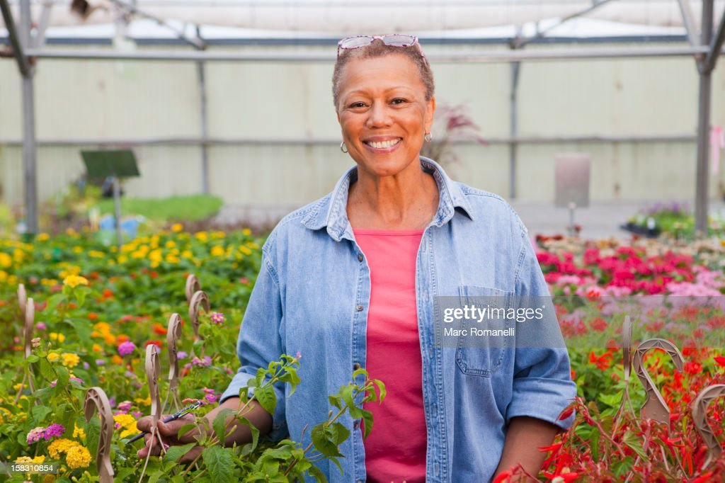 Mixed race woman working in plant nursery : Stock Photo