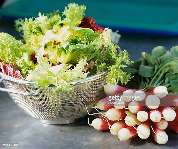 Mixed salad leaves in colander and a bunch of radishes