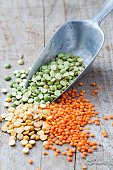 Mixed selection of peas and lentils