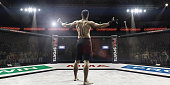 Mma fighter in cage arena with hands up, rear view
