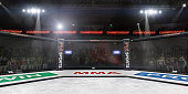 empty mma arena under lights with spectators on the background 3d rendering