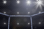 empty mma arena side view under lights