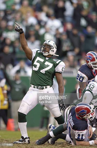 Mo Lewis of the New York Jets celebrates after Drew Bledsoe of the Buffalo Bills was sacked during the NFL game on November 24 2002 at Giant Stadium...