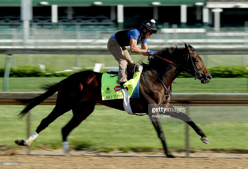 Mo Tom runs on the track during morning training for the 2016 Kentucky Derby at Churchill Downs on April 29, 2016 in Louisville, Kentucky.