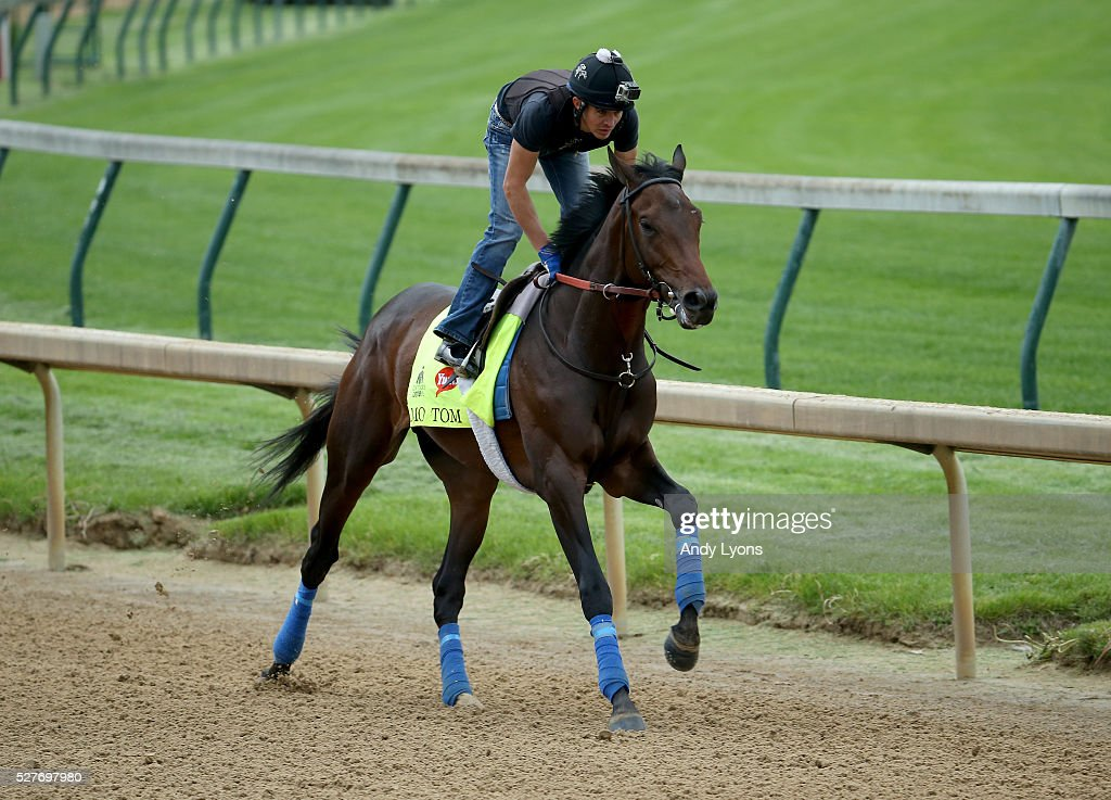 Mo Tom runs on the track during the morning training for the 2016 Kentucky Derby at Churchill Downs on May 03, 2016 in Louisville, Kentucky.