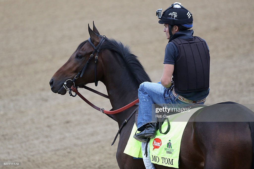 Mo Tom waits to train on the track for the Kentucky Derby at Churchill Downs on May 03, 2016 in Louisville, Kentucky.