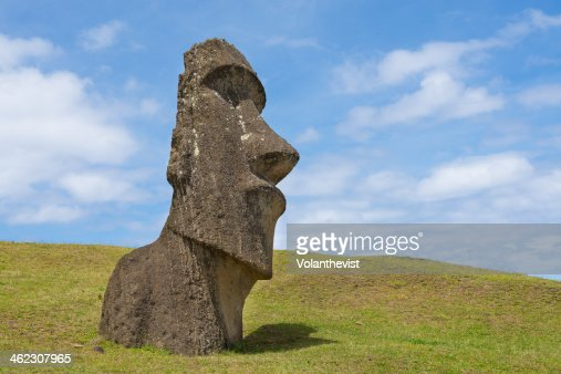 Moai sculpture half buried in grass in a sunny day
