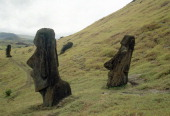 Moai statues buried up to their necks by soil creep on the slopes of the volcanic quarry Rano Raraku Easter Island Easter Island
