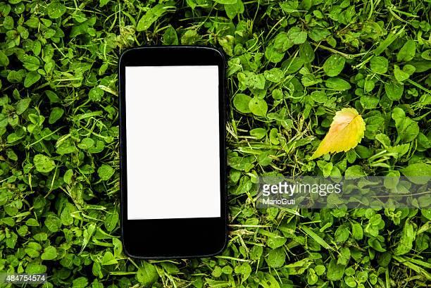 Telefono cellulare su erba