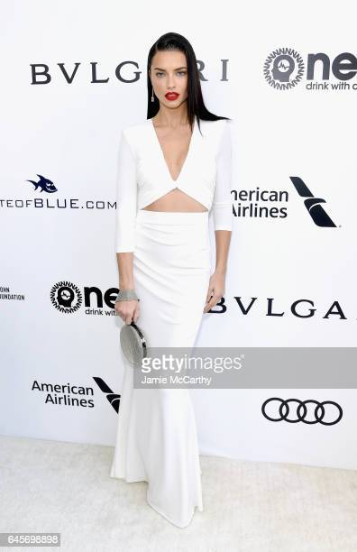 Model Adriana Lima attends the 25th Annual Elton John AIDS Foundation's Academy Awards Viewing Party at The City of West Hollywood Park on February...