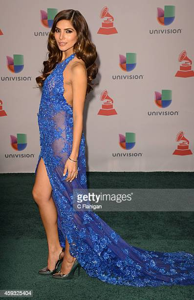 Model Alejandra Espinoza attends the 15th Annual Latin GRAMMY Awards at the MGM Grand Garden Arena on November 20 2014 in Las Vegas Nevada