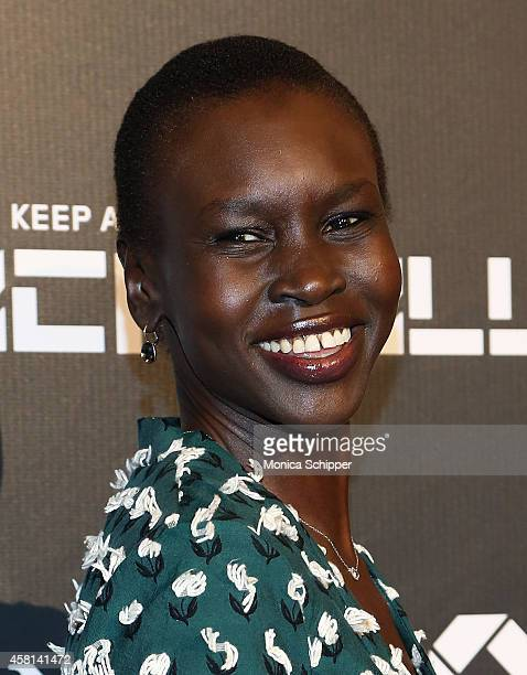 Model Alek Wek attends the 9th annual Keep A Child Alive Black Ball at ...