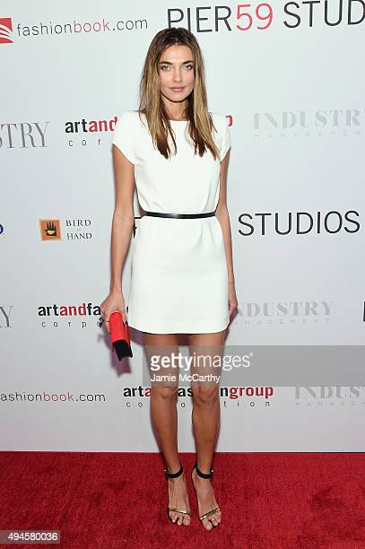 Model Alina Baikova attends the Pier 59 Studios 20th Anniversary Party at Pier 59 Studios on October 27 2015 in New York New York