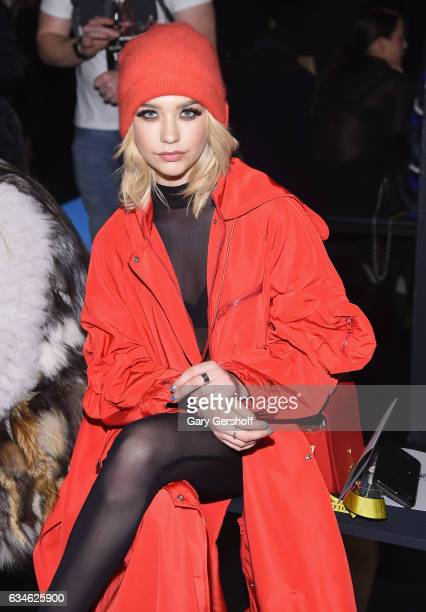 Model Amanda Steele attends the Cushnie Et Ochs fashion show during February 2017 New York Fashion Week at Gallery 1 Skylight Clarkson Sq on February...