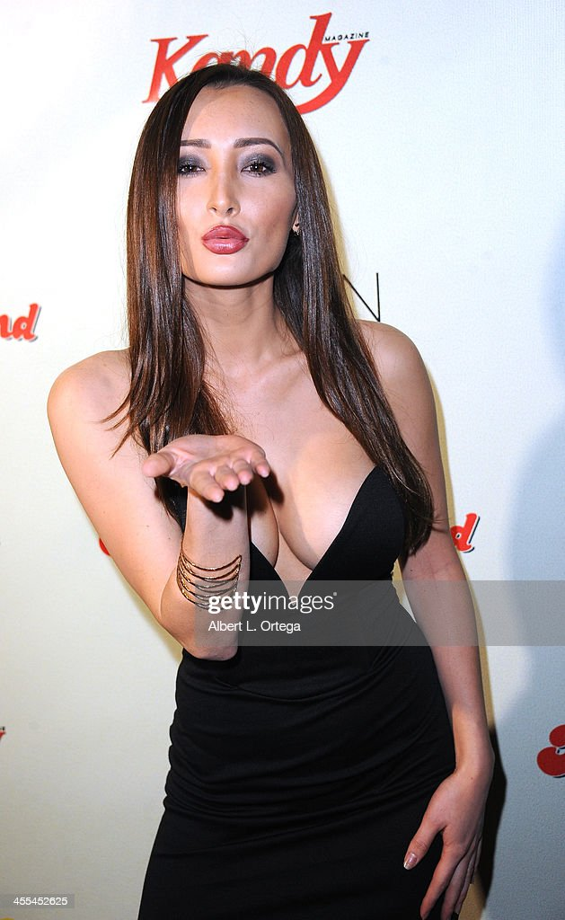 Model Amy Markham attends the 6th Annual Babes In Toyland Charity Toy Drive held at The Station at The W Hotel on December 11, 2013 in Hollywood, California.