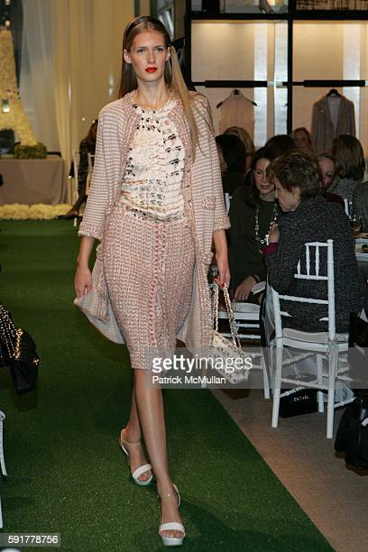 Model attends The Camellia Luncheon Sponsored by Chanel to benefit The New York Botanical Garden at Chanel on October 25 2005 in New York City