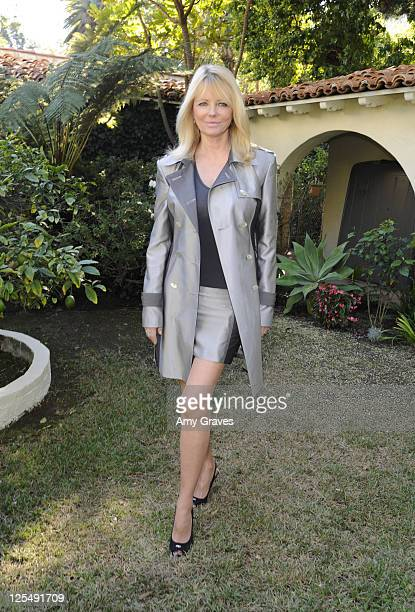 Model Cheryl Tiegs attends the Roberto de Villacis 2011 Collection private viewing party on November 14 2010 in Los Angeles California